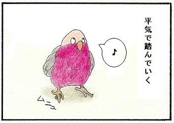 自分の糞に動じない鳥3