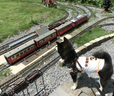 電車 チャロ