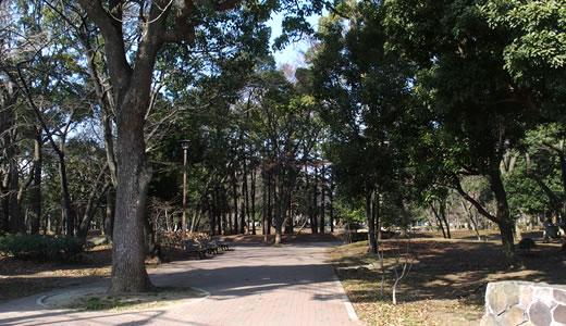 門前仲町(2)-4