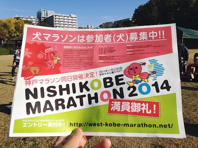 11月23日(日)記念すべき『第1回西神戸マラソン』に参加しました(^^♪