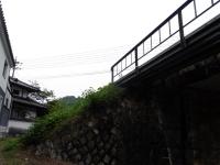8月_tr11s