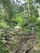 山荘の脇から登る