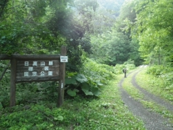 林道を出発