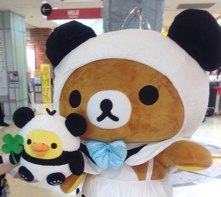 パンダでごろんリラックマ