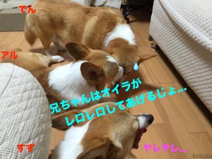 2_201508210859467c9.jpg