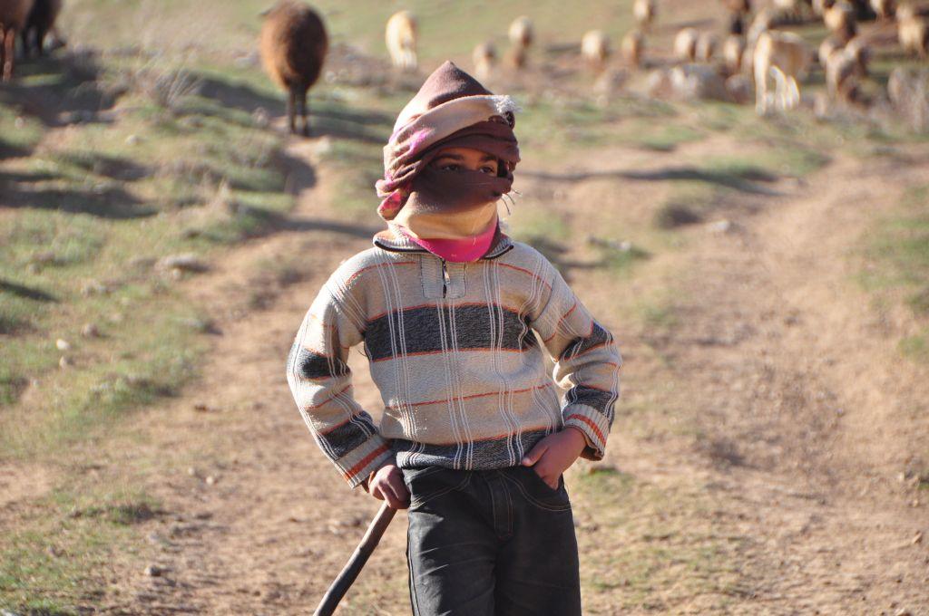 羊飼い少年