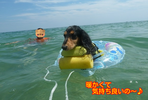 20150818124838774.png