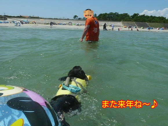 20150818124919b94.png