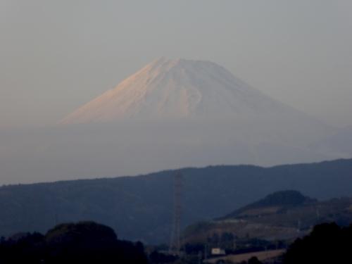 東京旅行2015春-216