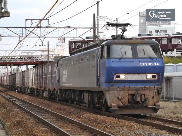 P1060593.jpg