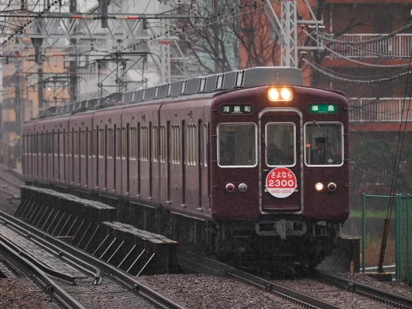 P3070153.jpg