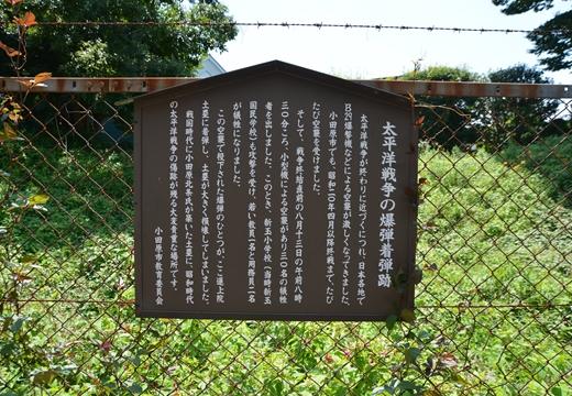 小田原201507 (219)_R