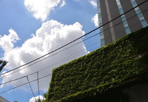 渋谷・三軒茶屋 (160)_R