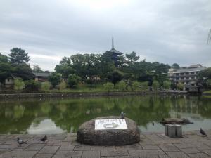 sarusawa0819_convert_20150819112726.jpg