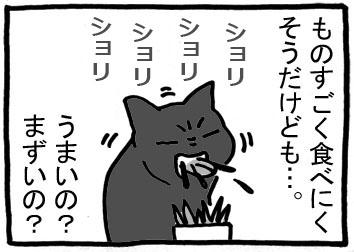 156a.jpg