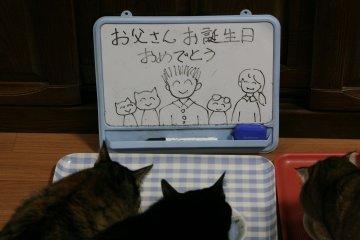 kotasuzumiyu48.jpg