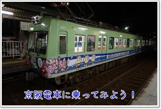 DSC05714.jpg