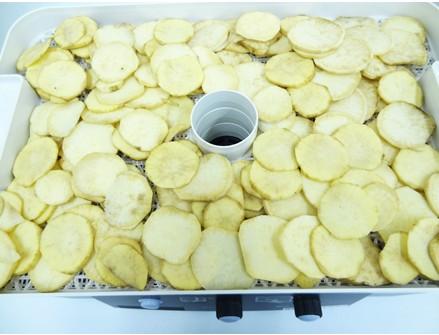 食品乾燥機で干し芋