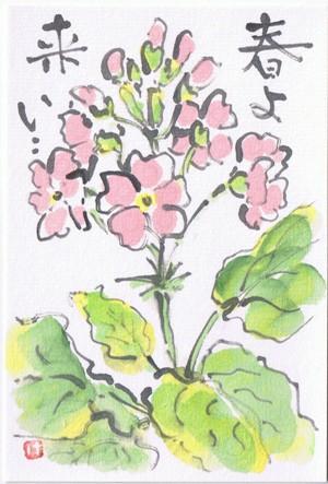 sakurasou 1