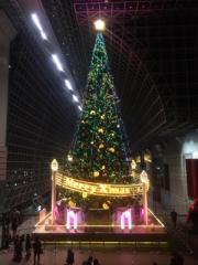 京都駅ツリー2