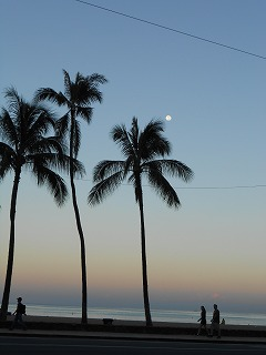 s-ハワイ 2013.8 427