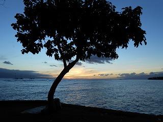 s-ハワイ 2013.8 086