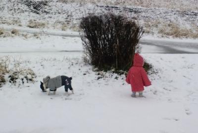 snow20153.jpg