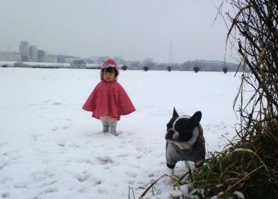 snow20154.jpg