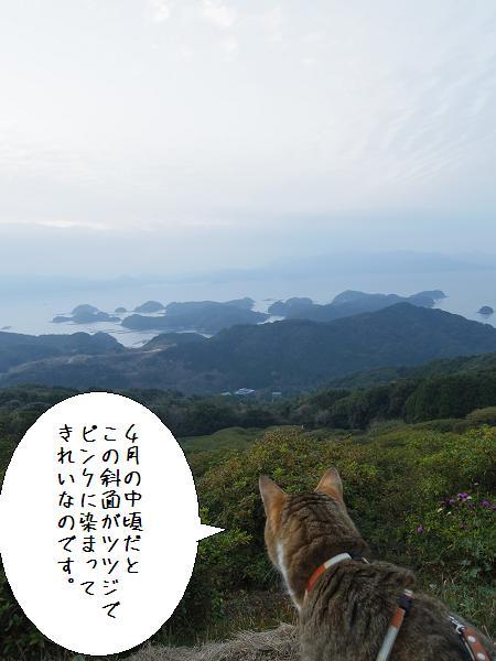 長串山公園6