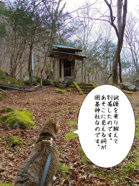 囲碁神社5