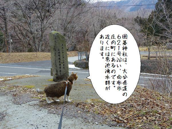 囲碁神社2