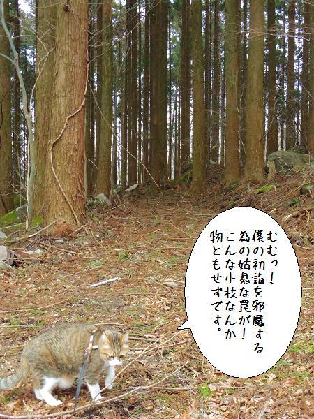 囲碁神社4