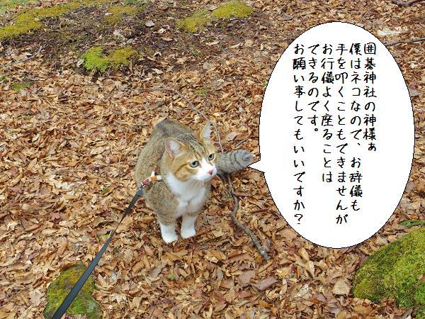 囲碁神社7
