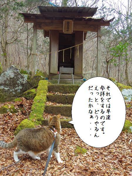 囲碁神社6