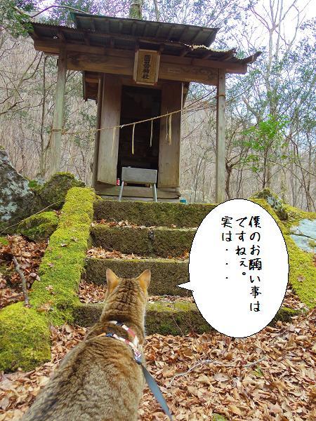 囲碁神社8