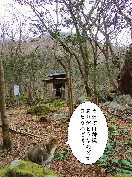 囲碁神社15