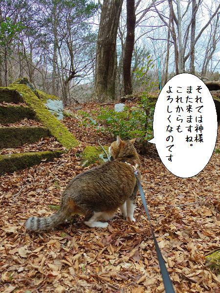 囲碁神社13