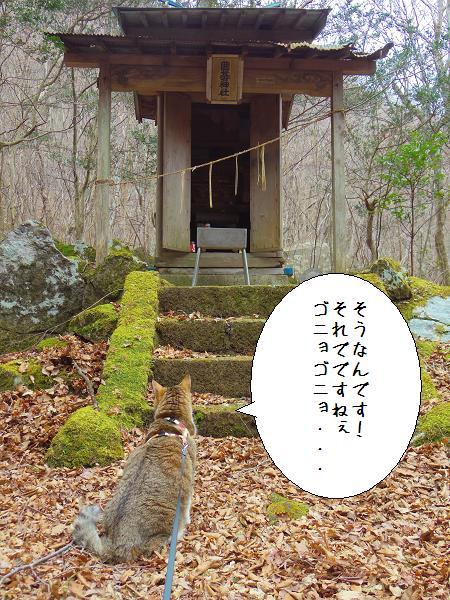 囲碁神社12
