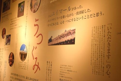 270720 竹富島3