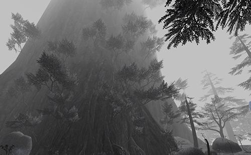 エスカの神木