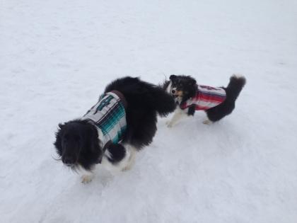 雪遊び32