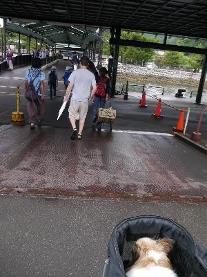 広島5−9