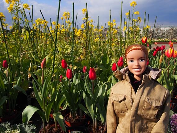 flower-20150111-02s.jpg