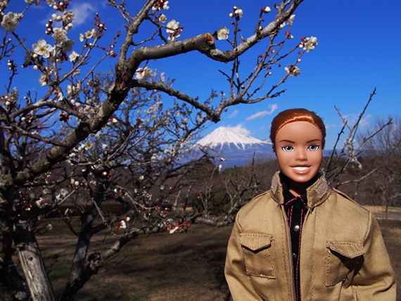 iwamoto-20150214-05s.jpg