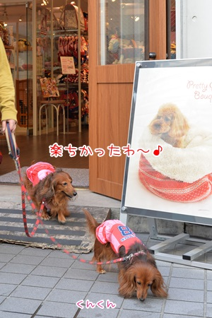 20141101_10.jpg
