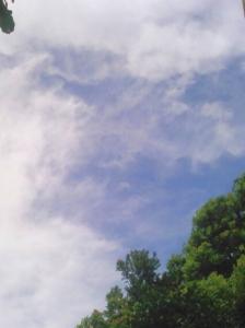 20150818夏の空