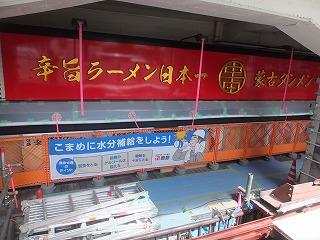 shinagawa-shinatatsu47.jpg