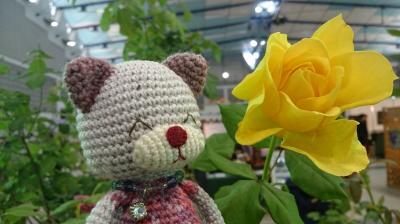 とうほく蘭展&バラとガーデン