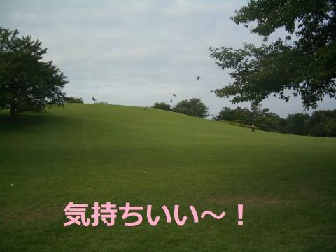 CIMG4592.jpg
