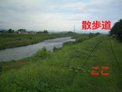 CIMG4874.jpg